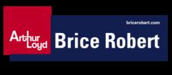 Logo Brice Robert BLEU
